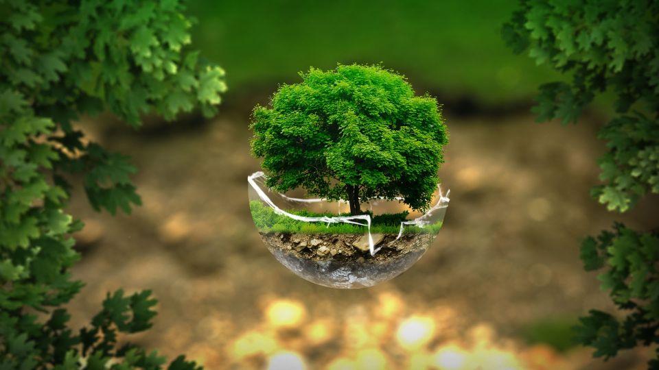Implementazione di un Sistema di Gestione Ambientale (SGA)